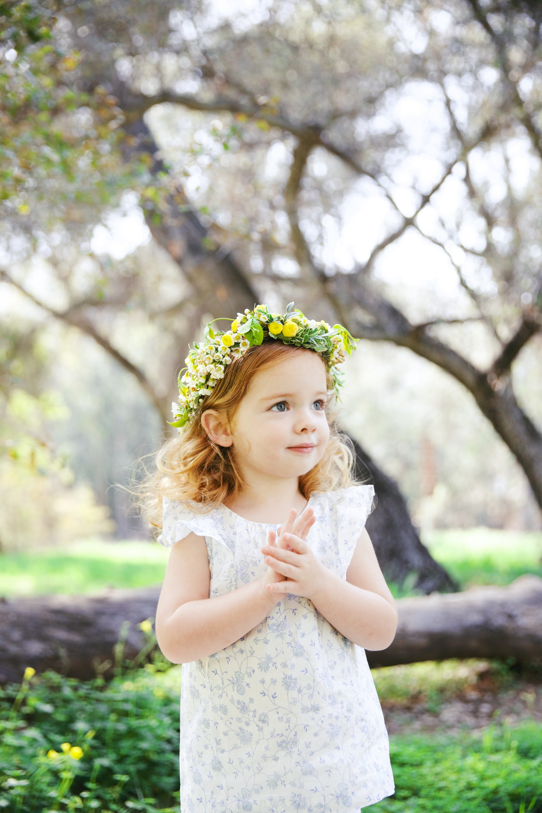 Styled Baby Shoot in Forrest